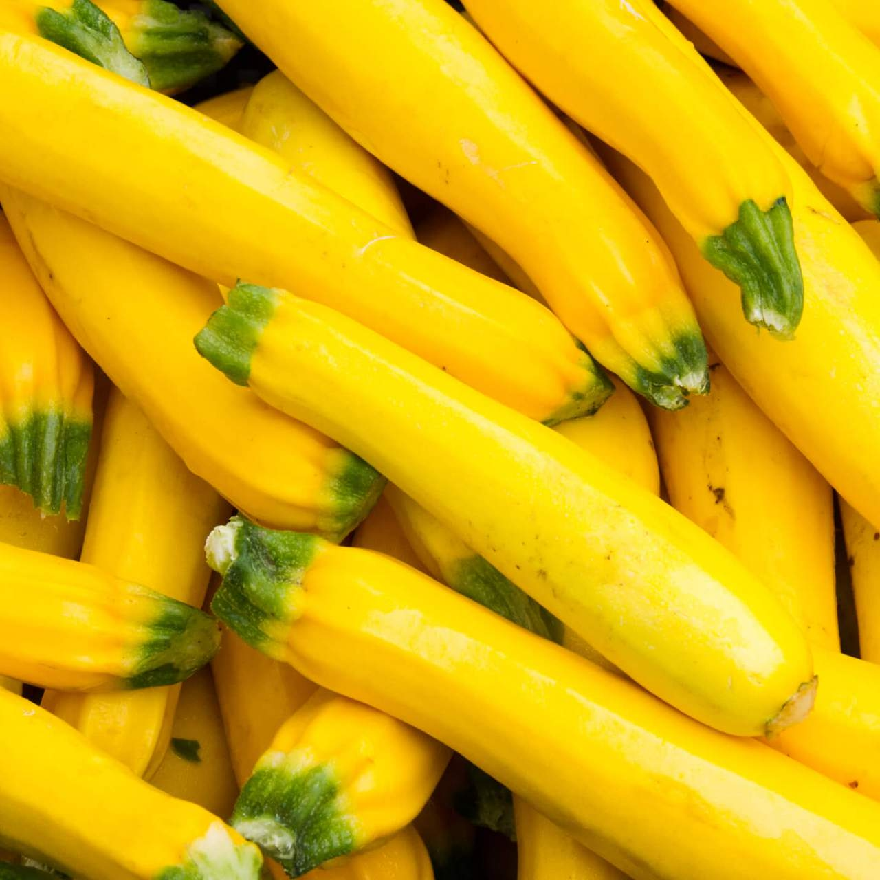 Yellow Squash Why You Should Start Eating This Veggie Now Slender Kitchen